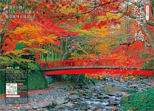 「紅葉×橋」ページ例