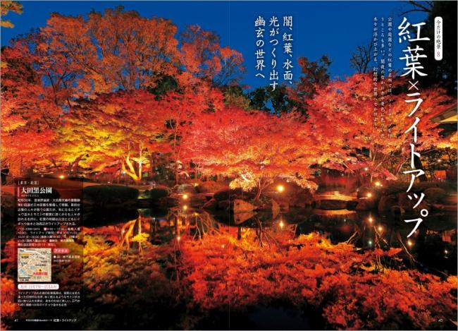 「紅葉×ライトアップ」ページ例