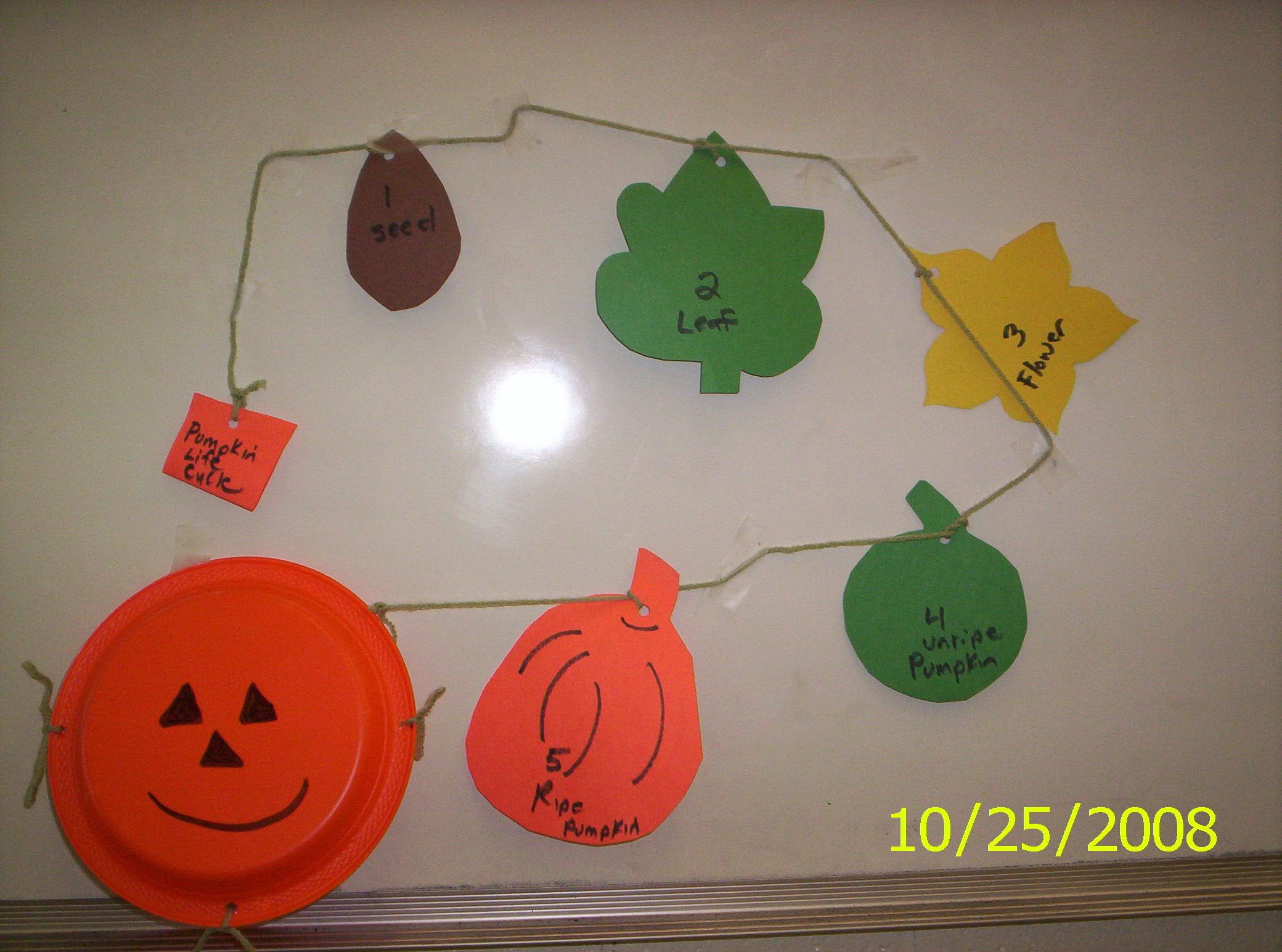 Fall And Halloween Projects For The Classroom Plant Life Cycles And Pumpkin Math