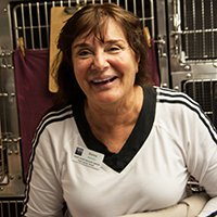 Donna W. - Hospital Volunteer, Wildlife Rescuer