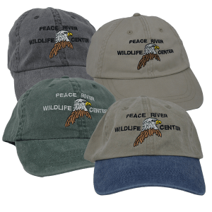 Embroidered Eagle Baseball Caps