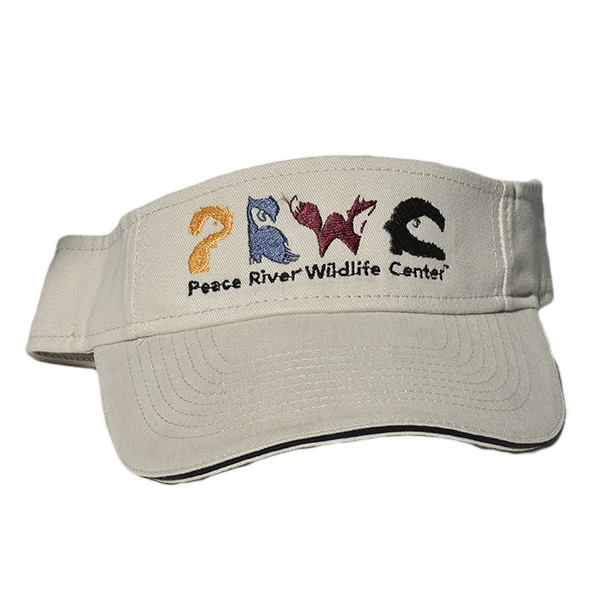 Sun Visor with Embroidered Logo Gray