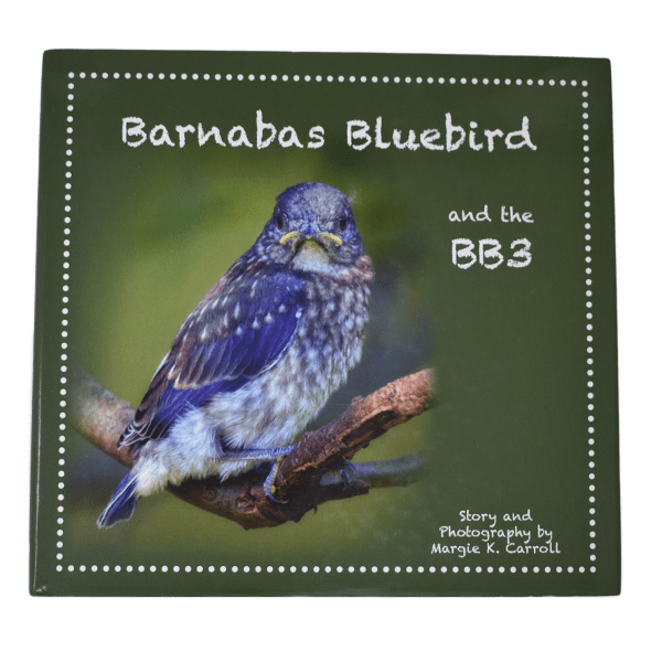 Barnabas Bluebird Book