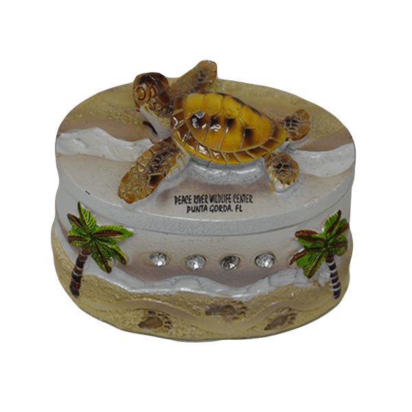 Sparkly Sea Turtle Treasure Box