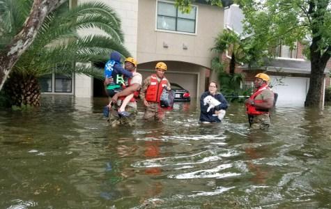 Hurricane Harvey's Havoc
