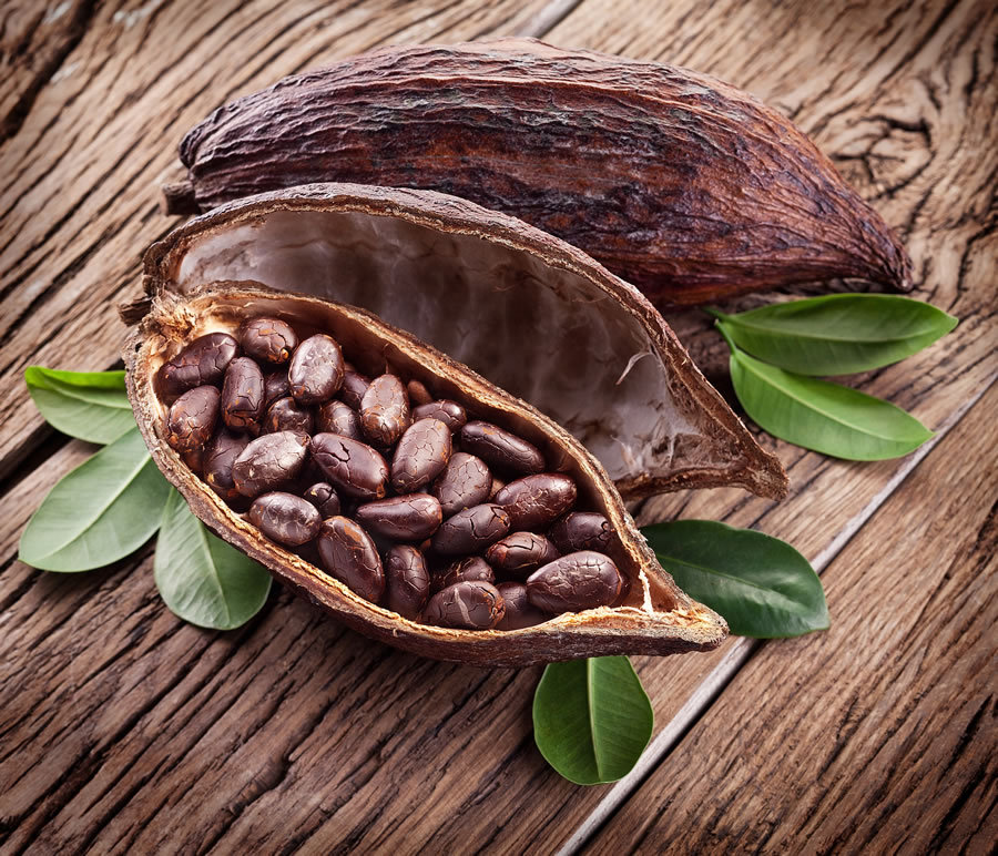 cocoa-nomics-cacao-large-pod-with-beans
