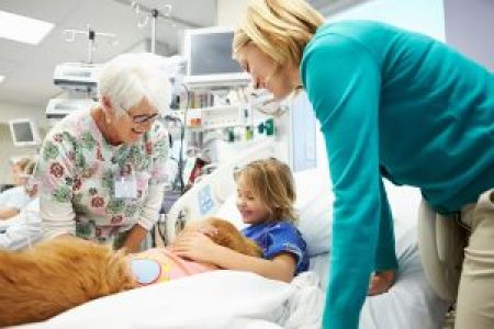 pet-therapy-dog-in-hospital-child-in-bed-with-nurse