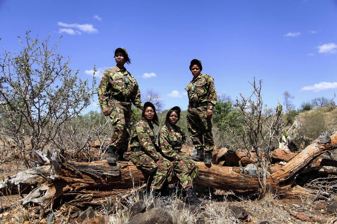 Black Mambas Women Anti-poaching Unit - group-of-women-sitting-and-standing-on-fallen-tree