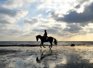 horse-riding-single-rider-on-beach