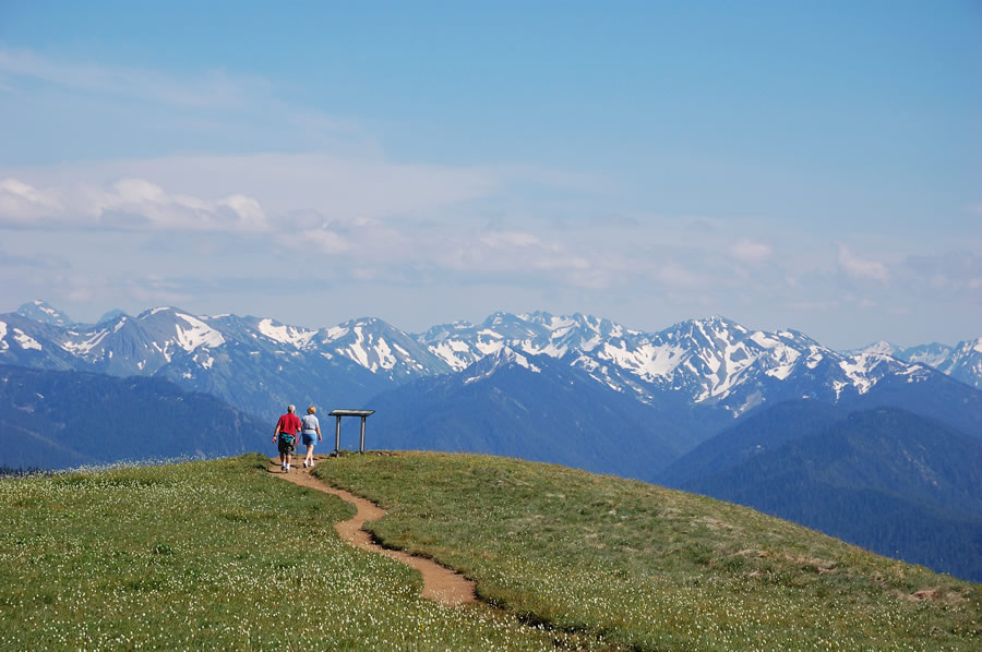 moving-mountain-viewpoint-in-the-summit-olympic-national-park-washington-usa