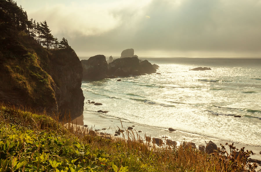 moving-olympic-national-park-landscapes