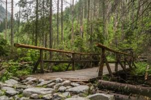 Tatry - drewniany mostek w Dolinie Roztoki