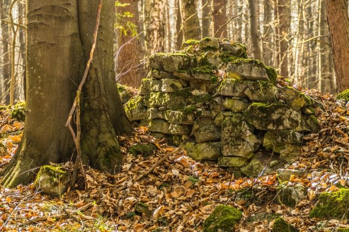 ruiny kamiennego muru w lesie