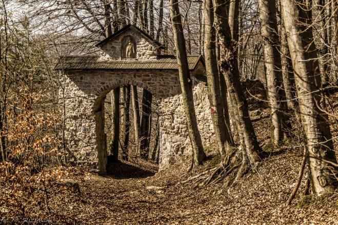 kamienna brama w lesie