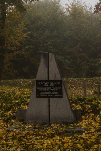 Główny Szlak Świętokrzyski - Gołoszyce cmentarz