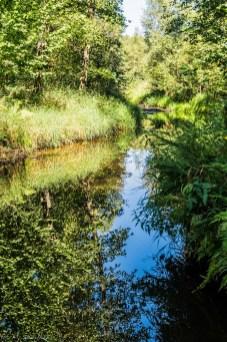 Główny Szlak Świętokrzyski - rzeka Lubrzanka