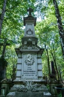 stare powązki - grób pomiędzy brzozami