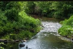 rzeka z dość szybkim nurtem