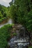 potok płynący pośród drzew