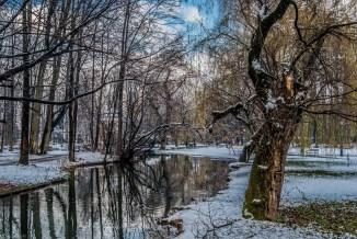 żywiec - park zamkowy zima rzeka drzewa