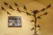 żywiec - muzeum miejskie stary zamek wystawa ptaki