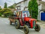 Sremski Kralovci mieszkańcy - serbia