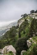 monreale - erice widok z góry