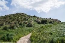 segesta - park ścieżka