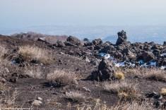 skały i suche trawy