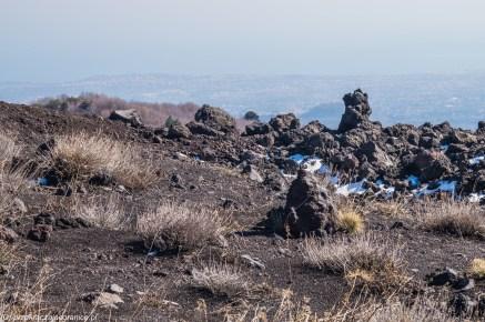 wulkan etna - i suche trawy