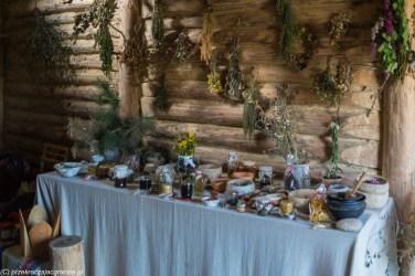 stół z różnymi ziołami i miksturami zielarskimi