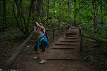 leśna droga schody kobieta