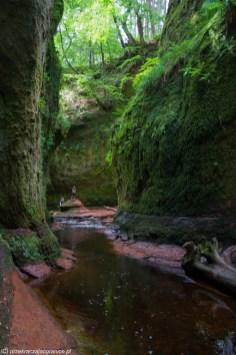 woda rzeczka wysokie zielone skały