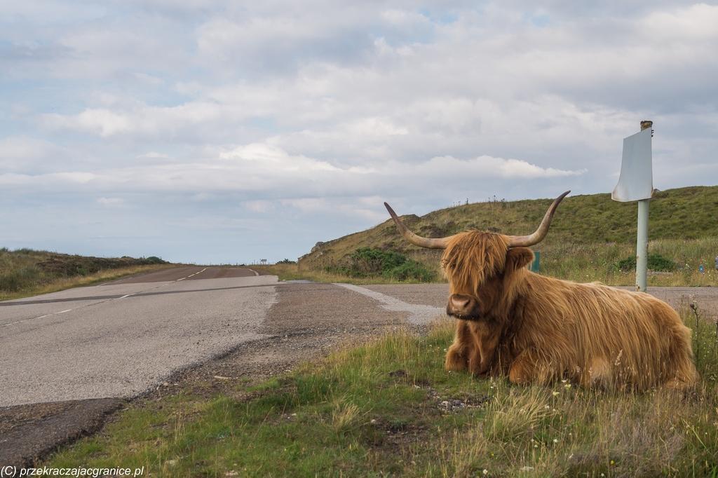 Szkocja - co warto wiedzieć?