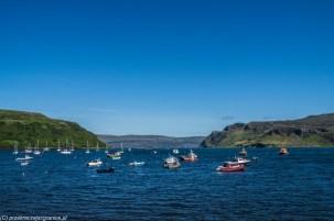 łodzie i jachty stojące w zatoce