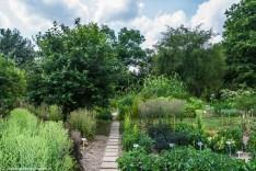Ogród Botaniczny UMCS - Lublin