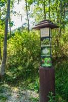 Zatwarnica - Botaniczny Plac Zabaw