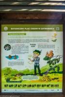 Nauka i zabawa - co robić w Bieszczadach