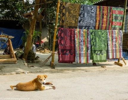 północny wietnam - mai chau pies na ulicy