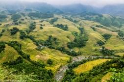 północny wietnam - sa pa tarasy ryżowe