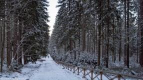 szlak wokół Szklarskiej Poręby - Wodospad Kamieńczyka