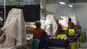 atrakcje karpacza - huta julia praca zdobienia