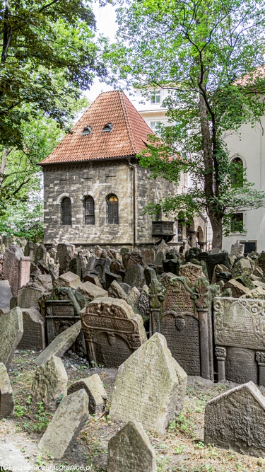 Cmentarz Żydowski - Praga