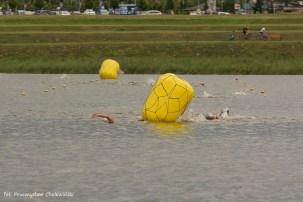 Grand Prix Wielkopolski w pływaniu (42)