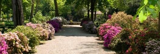 Ogrod botaniczny Florencja