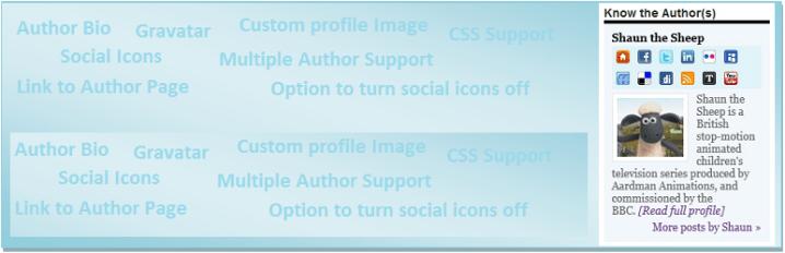 Author Spotlight (Widget)