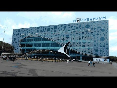Москвариум (Moskvarium, oceanarium in Moscow)
