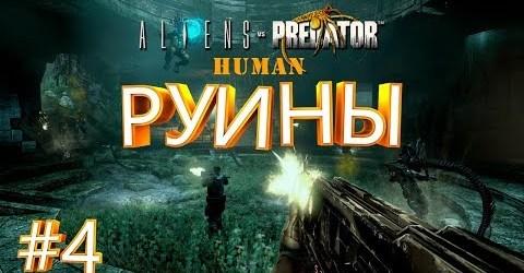 РУИНЫ ► Aliens vs Predator ► Human #4