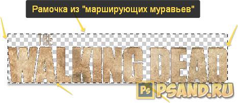 Vi laddar ner bilden direkt i programmet, kopiera det och sätt in det i bakgrundsbilden.