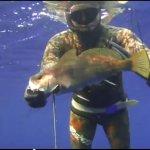 Υποβρύχιο ψάρεμα Σηκιού